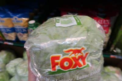 foxy iceberg lettuce free at BJs